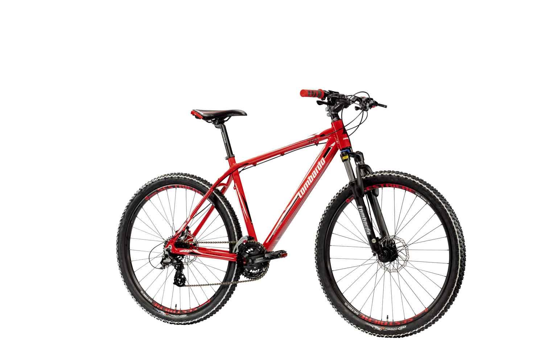 Mountain Bike Lombardo Sestriere 300 29 Altus